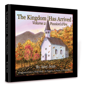 The Kingdom Has Arrived Volume 2 by Amy Jean