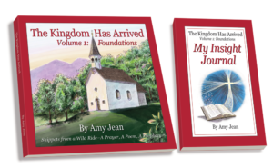 The Kingdom Has Arrived Volume 1 and My Insight Journal by Amy Jean